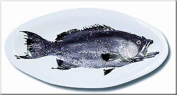 Image: Gregory Aragon Scamp — Small Gyotaku Platter