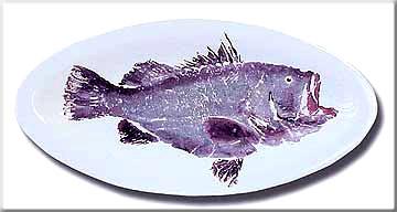 FishPlatters/WarsauGrouper