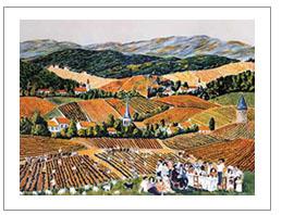HarvestSale/Burgundy.JPG